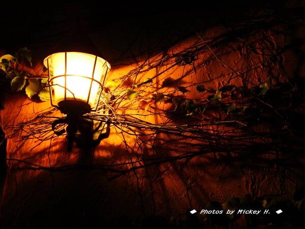 夜宴 Smokey Joe's 17--DSC00096