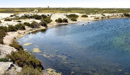 Paraje Natural Punta entinas y sabinar 2